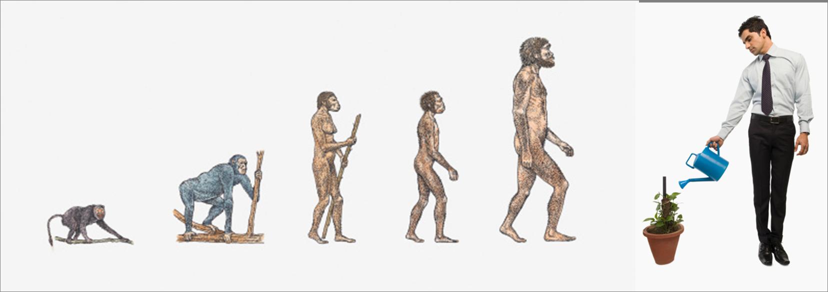 Evolution homme et développement durable
